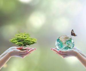 Día do Medio Ambiente. 5 de Xuño